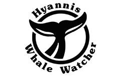 hyannis whale watcher logo